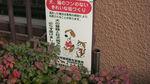nishi12.jpg
