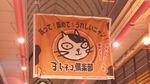 shikokuneko12.jpg